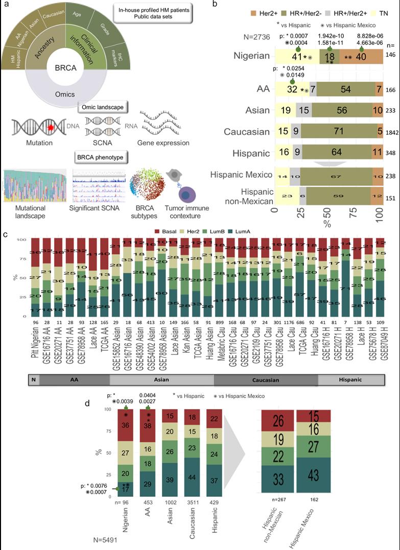 FUCAM publica importante descubrimiento en genética tumoral