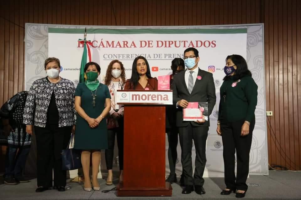Alma y Contrema impulsan en la Cámara de Diputados las acciones para conmemorar el Día Nacional sobre la Reconstrucción Mamaria 2021